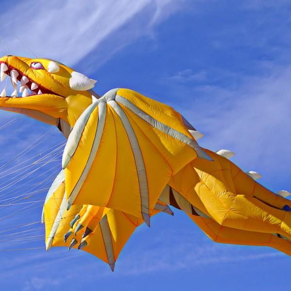 Dragon-W